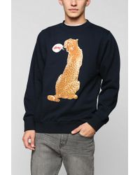 Urban Outfitters | Blue Stussy Cheetah Talking Pullover Sweatshirt for Men | Lyst