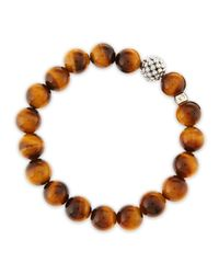 Lagos - Brown 10mm Caviarball Tigers Eye Beaded Stretch Bracelet - Lyst