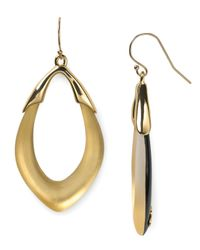 Alexis Bittar | Metallic Lucite Orbit Link Earrings | Lyst