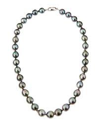 Belpearl | Gray Black Tahitian Pearl Necklace 18 | Lyst