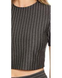 Torn By Ronny Kobo - Gray Dugan Pinstripe Crop Top - Heather Charcoal Stripe - Lyst