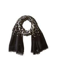Calvin Klein | Black Ombre Leopard Crepe Wrap | Lyst