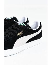 PUMA - Black Suede Classic + Sneaker for Men - Lyst