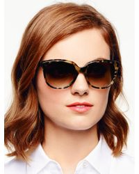 Kate Spade | Brown Bayleigh Sunglasses | Lyst