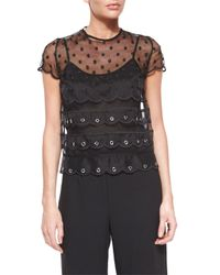 RED Valentino - Black Short-sleeve Organza Tulle Top - Lyst
