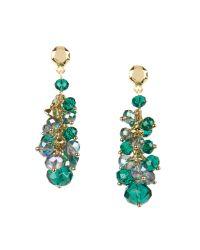 Ted Baker | Green Beaded Cluster Earring | Lyst