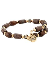 ALEX AND ANI - Brown Depths Of The Wild Woodland Hush Wrap Bracelet - Lyst