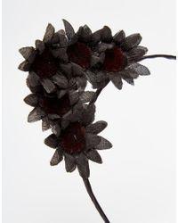 ASOS - Black Dark Floral Cat Ears - Lyst