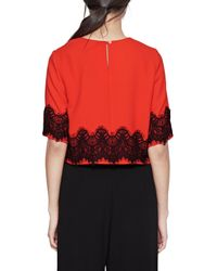 French Connection - Black Linea Lace Crop Top - Lyst