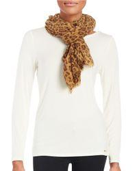 Lauren by Ralph Lauren | Brown Cheetah Print Knit Scarf | Lyst