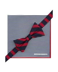 Tommy Hilfiger - Blue Stripe Bow Tie Pocket Square Set for Men - Lyst