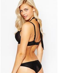 Scantilly - All Wrapped Up Cheeky Brief - Black - Lyst