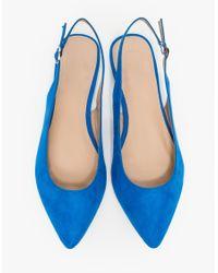 Need Supply Co. - Blue Brigitte Flat - Lyst