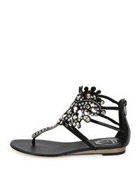 Rene Caovilla - Thong Sandals Black Calf Stones - Lyst