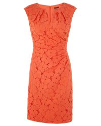 Adrianna Papell | Orange Cap Sleeve Lace Sheath Dress | Lyst