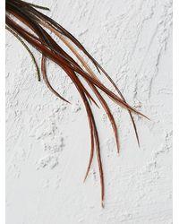 Free People | Brown Feather Shoulder Duster Earrings | Lyst