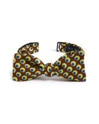 Ted Baker | Brown 'lexington Circles' Bow Tie for Men | Lyst