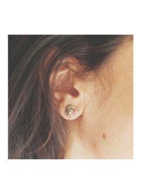 Melissa Joy Manning   Metallic Bronze Cast Ammonite Stud Earrings   Lyst