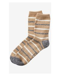 Express - Natural Striped Crew Socks - Lyst