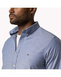 Tommy Hilfiger - Blue Big & Tall Oxford Shirt for Men - Lyst