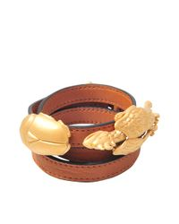 Valentino - Brown Gryphon Beetle Bracelet - Lyst