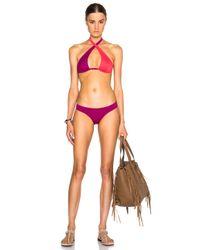 Ephemera - Pink Classic Bikini Bottoms - Lyst