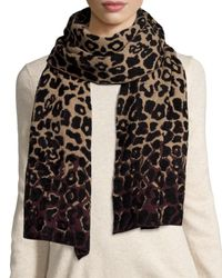 Lanvin | Multicolor Leopard-print Cold Weather Scarf | Lyst
