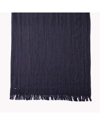 Tommy Hilfiger | Blue Cotton Scarf for Men | Lyst