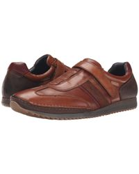 Pikolinos - Brown Liverpool M2a-6016 for Men - Lyst