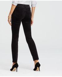 Ann Taylor - Black Tall Kate Velvet Skinny Leggings - Lyst