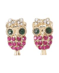 Betsey Johnson - Pink Enchanted Forest Owl Stud Earrings - Lyst