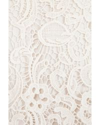 Ella Moss | White Jaime Lace Tank in Ivory | Lyst