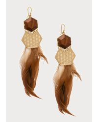 Bebe - Brown Feather Statement Earrings - Lyst