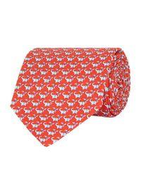 Ferragamo - Red Elephant And Bird Print Silk Tie for Men - Lyst