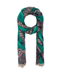 Michael Stars | Painted Feathers Scarf in Teal | Lyst