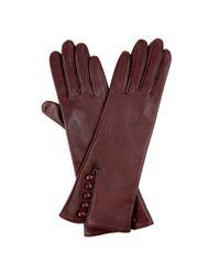 Hobbs | Red Debutante Glove | Lyst