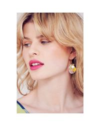 Tatty Devine - Multicolor Scallop Shells Earrings - Lyst