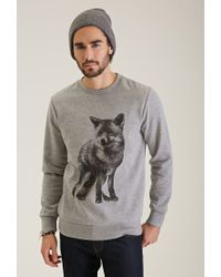 c7bcf8d0ed12b8 Lyst - Forever 21 Fox Graphic Sweatshirt You've Been Added To The ...