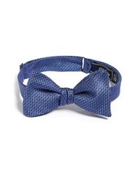 David Donahue - Blue Silk Bow Tie for Men - Lyst