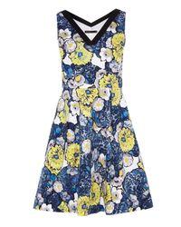 Karen Millen | Blue Daisy Floral Print On Cotton Dress | Lyst
