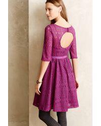 Plenty by Tracy Reese   Purple Fairisle Lace Petite Dress   Lyst