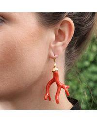 Lucifer Vir Honestus Red Coral Earrings