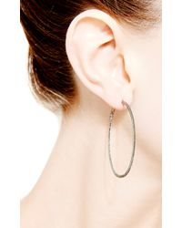 Dana Rebecca | Hoop Earrings in Black Diamond | Lyst