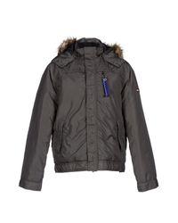 Hilfiger Denim - Gray Jacket for Men - Lyst