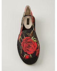 Dolce & Gabbana - Black Rose Print Espadrilles - Lyst