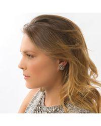 DANNIJO | Metallic Alix Earrings | Lyst
