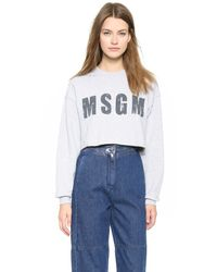 MSGM - Gray Cropped Sweatshirt - Grey - Lyst