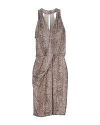 Compagnia Italiana - Gray Knee-length Dress - Lyst
