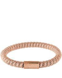 Carolina Bucci | Pink Bracelet | Lyst