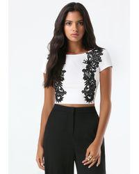Bebe - Black Lace Applique Top - Lyst